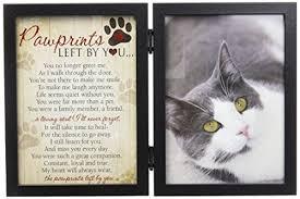 cat memorial cat memorial picture frames kritters in the mailbox