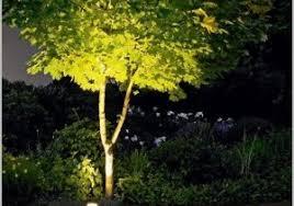 Landscape Lighting Basics Landscape Lighting Basics Inviting Landscape Lighting Basics The