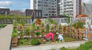 Patio Vegetable Garden Ideas Container Vegetable Gardening Ideas U2013 Home Design And Decorating