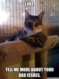 Star Wars Cat Meme - wars cat