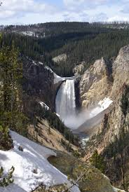 76 best yellowstone national park 2014 vacation images on