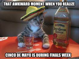 Meme Cinco De Mayo - 7 funny cinco de mayo memes to get you hyped for may 5