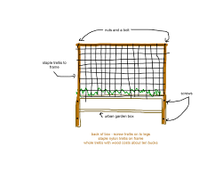 tomatoes on two different types of trellis raised urban gardens