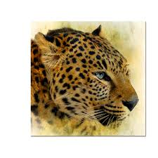 decor animal print promotion shop for promotional decor animal