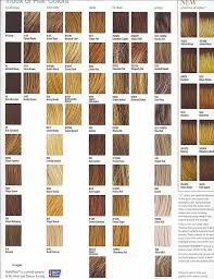 nicen easy color chart hair colors nice easy hair color chart awesome shades blonde hair