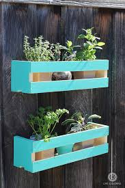 how to make a cute wall herb garden live colorful