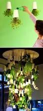 Herb Garden Layout Ideas by Furniture Amusing Indoor Herb Garden Ideas Pioneer Settler