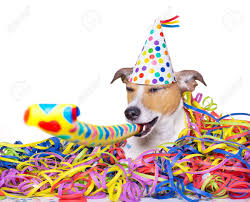 new years streamers happy dog a party with serpentine streamers