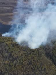 Fires Palmer Alaska by Division Of Forestry Calls In Smokejumpers For 10 Acre Fire Near