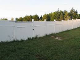 build a cane corso dog fence san rocco cane corso puppies for sale