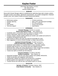 It Executive Resume Examples by Best Intranet Manager Resume Example Livecareer