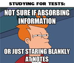 Blanket Fort Meme - the dys guide to surviving the leaving cert donegal daily