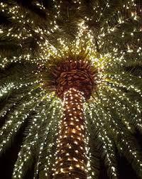 120 best lights images on lights