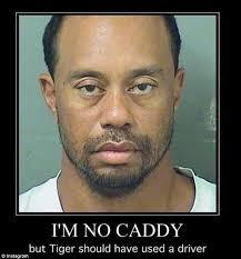 Mugshot Meme - funny tiger woods mugshot memes page 2 memeologist com