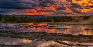 photographs of yellowstone national park and its animals geysers
