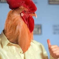 Rooster Meme - create meme homo capitalism homo capitalism you cock rooster