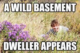 Basement Dweller Meme - a wild basement dweller appears gardner quickmeme