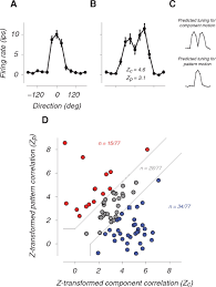 National Grating by Dynamics Of Macaque Mt Cell Responses To Grating Triplets