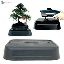 pot bonsai design pots bonsai water pot design pot decorating bonsai land water