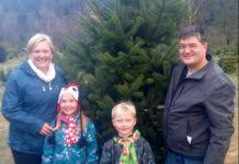 where to buy a tree in county southsoundtalk