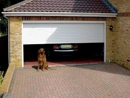 in a garage tips on keeping you pets safe while in the garage during summer