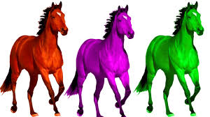 horse finger family 3d color horses dinosaur finger family song