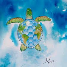 sea turtles by alexa home facebook
