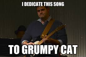 Funny Meme Songs - i dedicate this song to grumpy cat grumpy guitar quickmeme