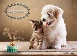 i wish you a happy birthday choose ecard from birthday