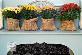 Outdoor Fall Decorating Ideas by The Shabby Nest Outdoor Fall Decor The Evolution Of This Year U0027s