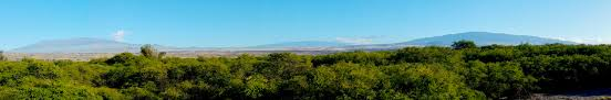 our condo is 5 minutes from hapuna beach in puako the hidden gem
