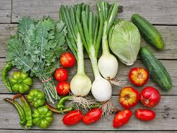 organic fruit delivery hong kong s best the radar local organic fruit veg
