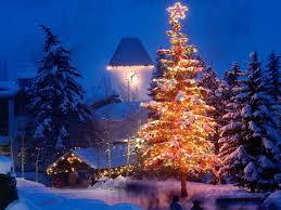 christmas trees and lights christmas tree lights to beautify the christmas tree lgilab com