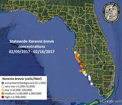 Map Of Clearwater Beach Florida by Florida Fishing Report Red Tide Status 2 17 17 Florida Fishing
