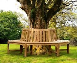 Curved Teak Garden Bench Teak Circular Tree Bench Round Circular Tree Seat