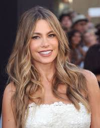 light brown hair 9 sofia vergara highlights sunkissed beautiful hair color