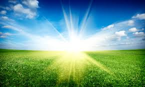 sunrise lawn care rochester ny u2013 affordable professional lawn and