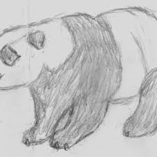 easy drawings of animals enjoy the ride and let s draw simple