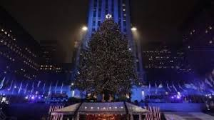 tree lights up at rockefeller center