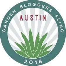 austin texas native plants the shovel ready garden october 2015