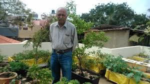 dr vishwanath in his terrace garden