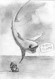 reddit u0027s sketch daily u2013 sharks meli hitchcock illustration