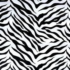 zebra print wrapping paper 24 best wrap images on wrap bubbles and