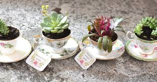 Seeking Teacup Diy Tea Cup Flowers Gift Idea Sew Bright Creations