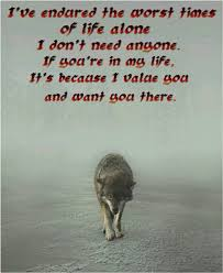 Lone Wolf Meme - 209 best the lone wolf images on pinterest fox werewolf and