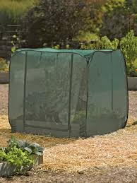 Insecticide For Vegetable Garden by Tall Pest Control Pop Up For Raised Garden Beds Buy From