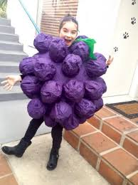 Halloween Grape Costume Landry Bender Cute Costume Halloween
