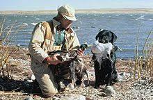 Underground Duck Blind Waterfowl Hunting Wikipedia