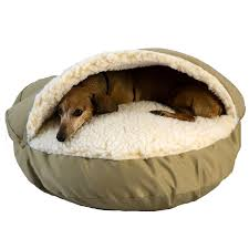 Petsmart Igloo Dog House Orthopedic Dog Beds Best Orthopedic Beds For Dogs Petco