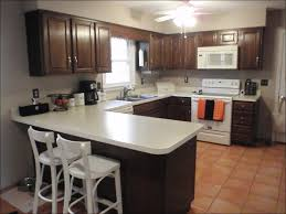 kitchen kitchen paint colors with dark oak cabinets gray and